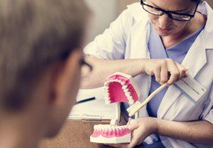 Dentist demonstrating